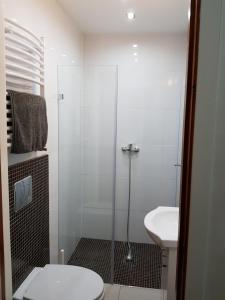Łazienka w obiekcie Spa Apartamenty Lidzbark