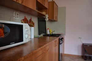A kitchen or kitchenette at Guest House u Mariny