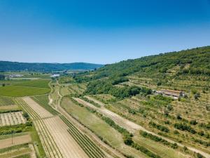 Vue panoramique sur l'établissement Apartments Casa Vuki