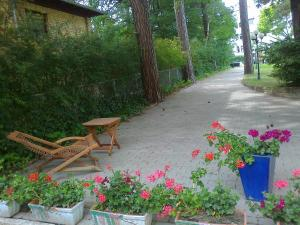 A garden outside Residenz Villa Kult