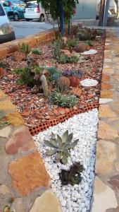 A garden outside Sun Rooms