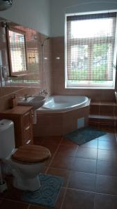 A bathroom at Apartmá Anglická