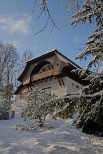 Villa Sängerstein during the winter