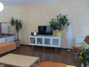 A television and/or entertainment center at Cozy Apartment in Leubnitz-Neustra near River