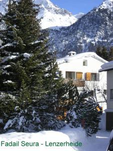 Fadail seura im Winter