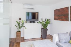 A television and/or entertainment centre at Salzburg City Appartement
