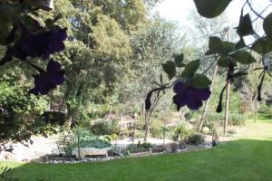 Jardin de l'établissement La Bergerie