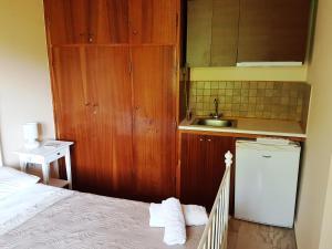 Küche/Küchenzeile in der Unterkunft Studios Lefkada