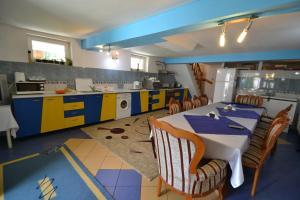 Cuisine ou kitchenette dans l'établissement Vila Ioana