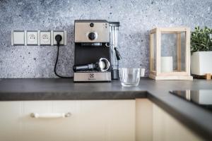 A kitchen or kitchenette at Boris' Apartments City centre parks