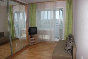 Телевизор и/или развлекательный центр в Квартира в центре Новгородский 113