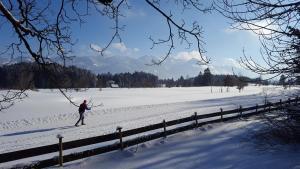 Das Talgut im Winter