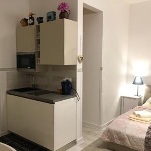 Küche/Küchenzeile in der Unterkunft PRAGUE MOON SUITE HOTEL