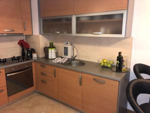 Kuchyňa alebo kuchynka v ubytovaní Apartment Marijeta