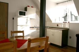 Kuchyň nebo kuchyňský kout v ubytování Apartmá Království Beskyd