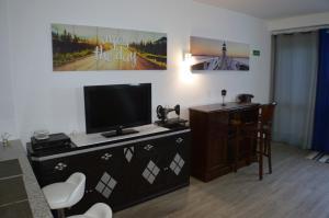 Uma televisão e/ou sistema de entretenimento em Apartamento Gois