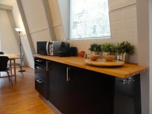 A kitchen or kitchenette at Frankendael Apartments
