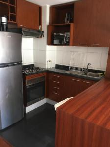 Una cocina o zona de cocina en Departamento Santiago Santa Lucia