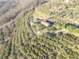 Vista aerea di Holiday House Petrarca