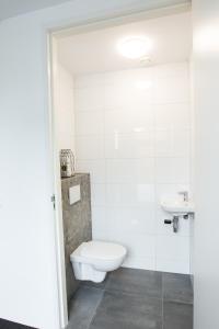 Een badkamer bij de rode beer (zeer rolstoelgeschikt)
