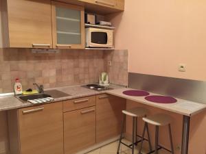 Kuchyňa alebo kuchynka v ubytovaní Apartmánový dom Kamzík