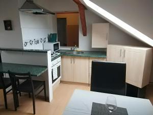 Kuchyň nebo kuchyňský kout v ubytování Apartment Sova
