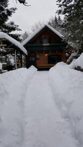 Holiday Home Prdelanca im Winter