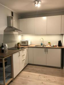 A kitchen or kitchenette at Apartament Strzałowa