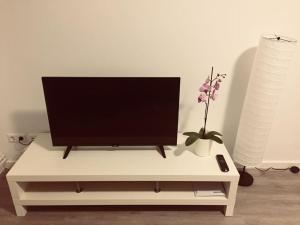 تلفاز و/أو أجهزة ترفيهية في Blue apartment