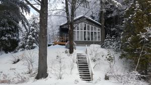 Moniquandre during the winter