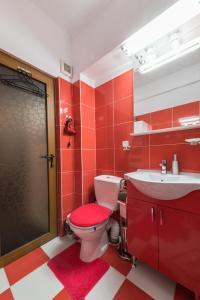 A bathroom at Brezoianu Hause