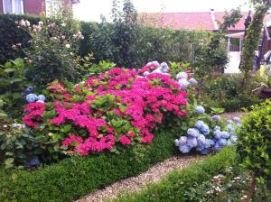 A garden outside Chalet nearby Roermond Outlet
