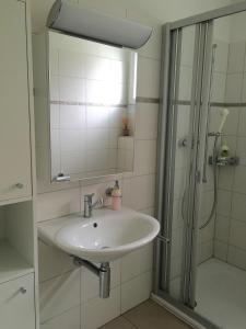 A bathroom at Charming Studio near Rotsee Lucerne Kitchen/WiFi/Wasching machine