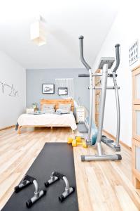 Posilňovňa alebo fitness centrum v ubytovaní Ash Apartment