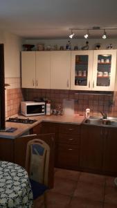 Kuhinja oz. manjša kuhinja v nastanitvi Pave