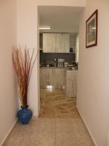 A kitchen or kitchenette at Brigitte house