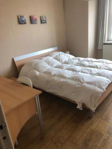 Un ou plusieurs lits dans un hébergement de l'établissement Zaventem 3
