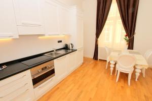 A kitchen or kitchenette at Luxury apartments Krocínova