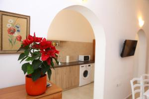 A kitchen or kitchenette at Apartments Dunja