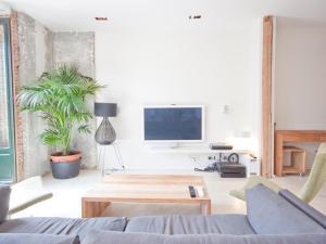 TV/Unterhaltungsangebot in der Unterkunft Gran apartamento de diseño @plazasanmiguel *lujo*