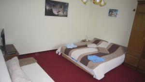 Postel nebo postele na pokoji v ubytování Villa Alexandr
