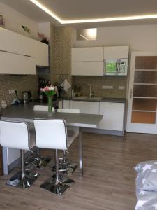 Kuchyň nebo kuchyňský kout v ubytování Luxury apartments in Prague