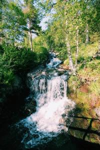 Natural landscape near the vacation home