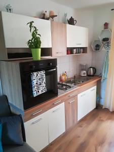 Virtuve vai virtuves aprīkojums naktsmītnē Apartment Ane