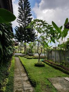 Um jardim em Mimpi manis villa