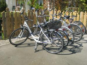 Radfahren an der Unterkunft Ferienapartmenthaus Hubertushof oder in der Nähe