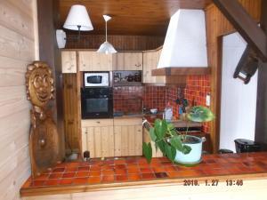 A kitchen or kitchenette at 965 avenue leopold Fabre GITE LE LANTIER