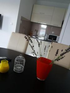 A kitchen or kitchenette at Apartman Elena