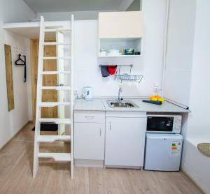 A kitchen or kitchenette at Studio FontanКа