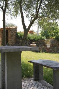 Um jardim no exterior de Aldeia Oliveiras